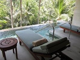 フォーシーズン リゾート バリ アット サヤン ジム