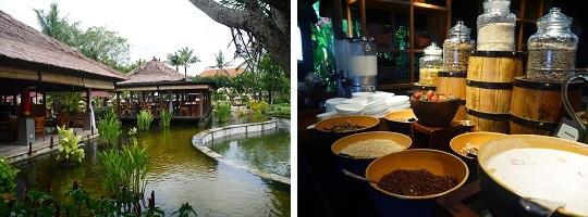 アヤナ リゾート&スパ バリ パディ レストラン-1