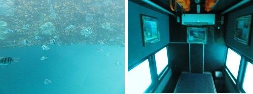 レンボンガン島 半潜水艦ツアー