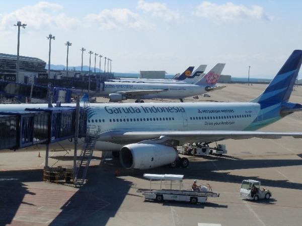 ガルーダ・インドネシア航空機体