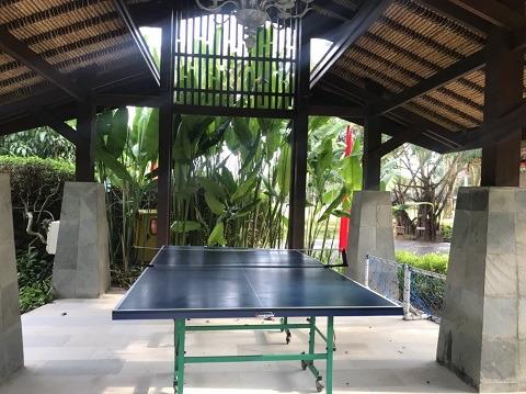 リンバ・ジンバラン・バリbyアヤナ 卓球台