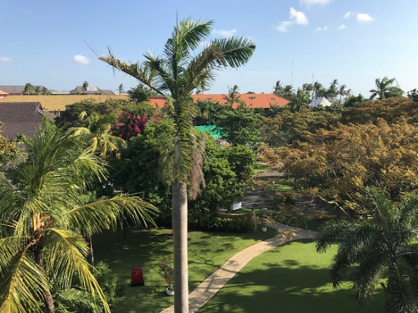 ディスカバリー・カルティカ プラザ ホテル お部屋からの眺望