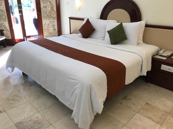 ディスカバリー・カルティカ プラザ ホテル プライベートガーデン