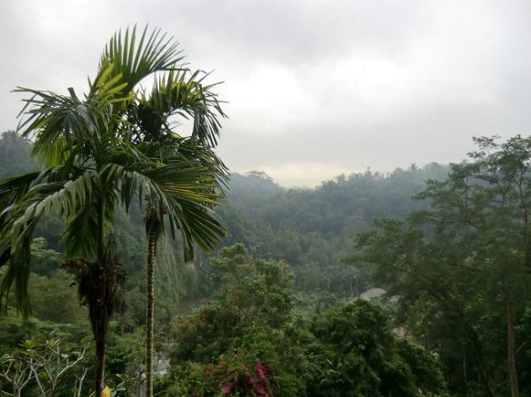 ロイヤルピタマハ ウブドの大自然の景色