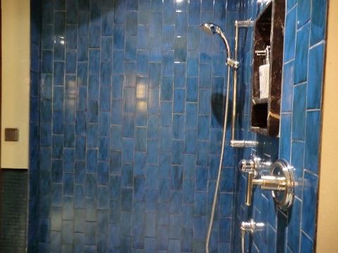 デュープレックススイート シャワールーム