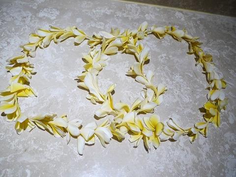 リンバ・ジンバラン・バリ・by・アヤナ フラワーレイ