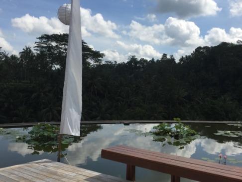 フォーシーズンズ リゾート バリ アット サヤン 蓮の池