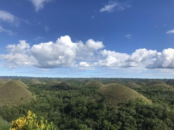 ボホール島 チョコレートヒルズ 頂上からの景色