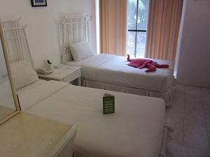 パシフィック セブ リゾート スーペリアルーム