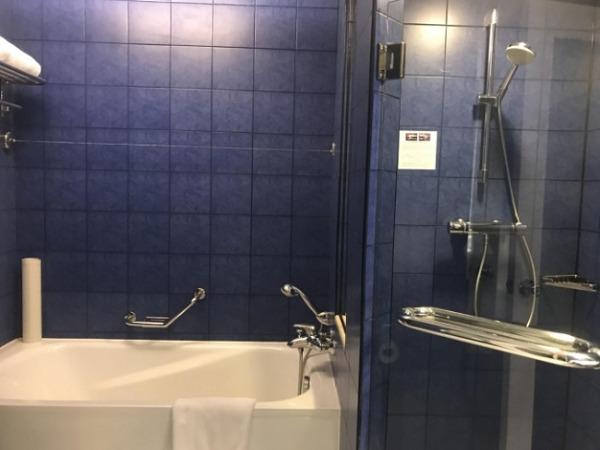 スーペリアアトリウムビュー バスルーム