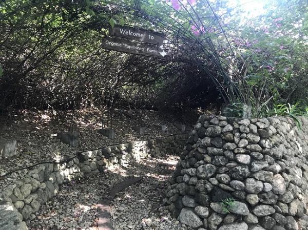 プルクラ 「プルクラ農園」入口