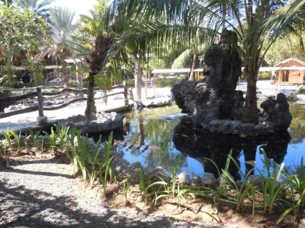 ブルーウォーター マリバゴ ビーチ リゾート 庭園