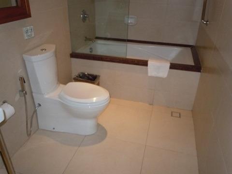 デラックスプールサイド トイレとバスタブ