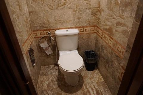アンバサダースイート トイレ