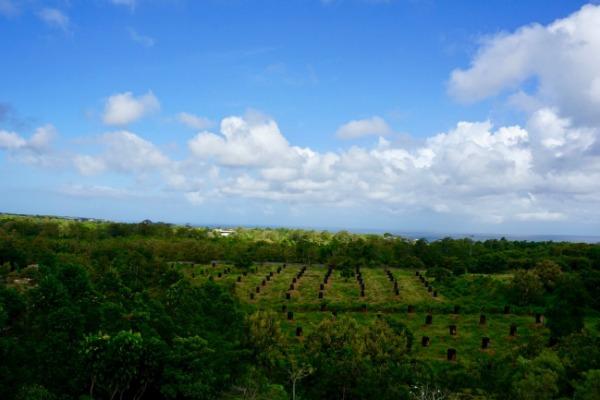 リンバジンバランバリbyアヤナ オーシャンビュー バルコニーからの景色